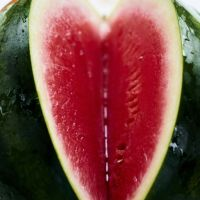 Dirty love and watermelons
